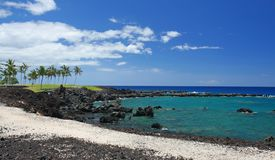 Tropisch Strand in Hawaï Stock Afbeeldingen