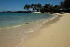 Tropisch strand (Hawaii/USA) Royalty-vrije Stock Foto