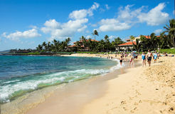 Tropisch strand in Kauai, Hawaï Stock Foto