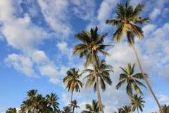 Tropisch strand - Langkawi Stock Fotografie