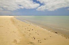 Tropisch strand met bewolkte hemel Royalty-vrije Stock Fotografie