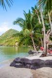 Tropisch strand met kokospalm Royalty-vrije Stock Afbeelding