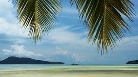 Tropisch strand met palmbladen op de hemel stock footage