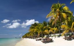 Tropisch strand met palmen en zonbedden Stock Fotografie