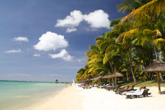 Tropisch strand met witte zand, palmen en zonparaplu's Stock Foto