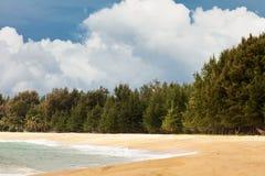Tropisch strand onder sombere hemel Stock Fotografie