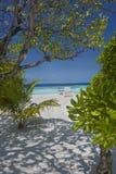 Tropisch strand op de Eilanden van de Maldiven Stock Foto