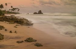 Tropisch strand, Sri Lanka Royalty-vrije Stock Afbeeldingen