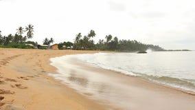 Tropisch strand, Sri Lanka stock footage