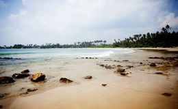 Tropisch strand in Sri Lanka Royalty-vrije Stock Afbeeldingen
