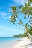 Tropisch strand - vakantieachtergrond Stock Afbeeldingen