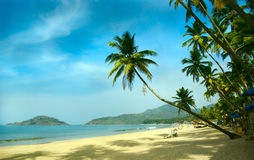 Tropisch strand van Palolem Royalty-vrije Stock Foto's