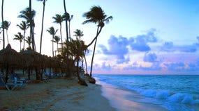Tropisch strand in zonsondergang stock foto's