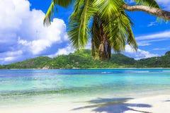 Tropisch strandlandschap, het eiland van Seychellen Mahe royalty-vrije stock afbeelding