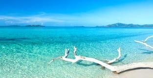 Tropisch strandpanorama Stock Afbeeldingen