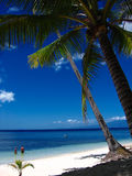 Tropisch strandparadijs stock foto's