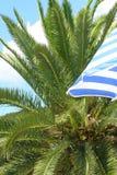 Tropisch toerisme Stock Afbeeldingen