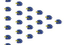 Tropisch Toy Fish Royalty-vrije Stock Afbeeldingen