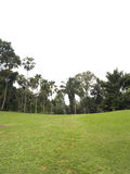 Tropisch tuinen en gebied Royalty-vrije Stock Afbeeldingen