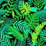 Tropisch vector kleurrijk bladeren naadloos patroon vector illustratie