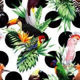 Tropisch vogels en palmbladenpatroon, zwarte rondesachtergrond royalty-vrije illustratie