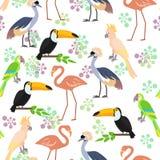 Tropisch vogels naadloos patroon Royalty-vrije Stock Afbeelding