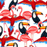 Tropisch vogels naadloos patroon met papegaaien Stock Afbeelding