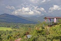 Tropisch Vooruitzicht stock afbeelding