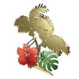 Tropisch Voorwerp Royalty-vrije Stock Afbeeldingen