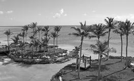 Tropisch wild strand Royalty-vrije Stock Foto's