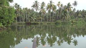 Tropisch wildernisbos met palmen op het meerwater van de eiland dichtbijgelegen kalm lagune in verbazend 4k zeegezicht van de Bin stock video