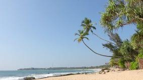 Tropisch wit zand maagdelijk strand stock videobeelden