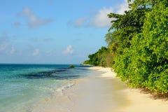 Tropisch zandig strand met inheemse bomen en turkooise overzeese en blauwe hemel met weinig kleine wolken Stock Foto