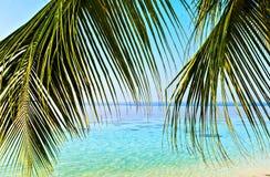 Tropisch zeegezicht Royalty-vrije Stock Foto's