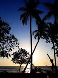 Tropisch zonsondergangstrand met palmenoverzicht royalty-vrije stock afbeeldingen