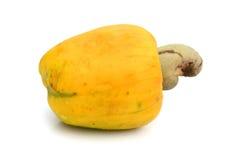Tropische Acajoubaumfrüchte auf weißem Hintergrund Stockbilder