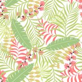 Tropische achtergrond met palmbladen Royalty-vrije Stock Fotografie
