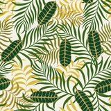 Tropische achtergrond met palmbladen Royalty-vrije Stock Afbeelding