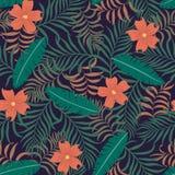 Tropische achtergrond met palmbladen Royalty-vrije Stock Foto's