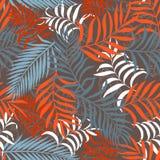 Tropische achtergrond met palmbladen Stock Foto's