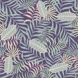 Tropische achtergrond met palmbladen Stock Foto