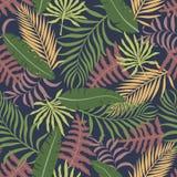Tropische achtergrond met palmbladen Naadloos BloemenPatroon Stock Foto's