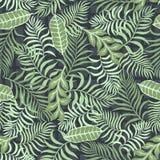 Tropische achtergrond met palmbladen Naadloos BloemenPatroon Royalty-vrije Stock Afbeeldingen