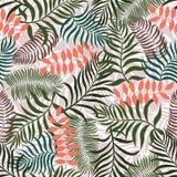 Tropische achtergrond met palmbladen Naadloos BloemenPatroon S Royalty-vrije Stock Afbeelding