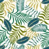 Tropische achtergrond met palmbladen Naadloos BloemenPatroon S Royalty-vrije Stock Fotografie