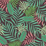 Tropische achtergrond met palmbladen Naadloos wildernis bloemenpatroon Stock Afbeeldingen