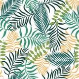 Tropische achtergrond met palmbladen Naadloze bloemen Stock Foto