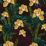 Tropische achtergrond met wildernisinstallaties Naadloos vector tropisch patroon royalty-vrije illustratie