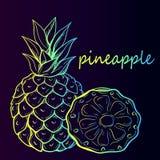 Tropische Ananas-Frucht lizenzfreie abbildung
