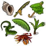 Tropische Anlagen, Stange, Krabbe, Eidechse und andere stock abbildung